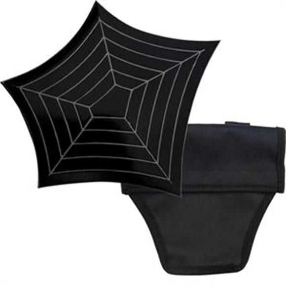 Picture of Spider Web Ninja Throwing Star